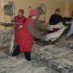 Processamento de bacalhau